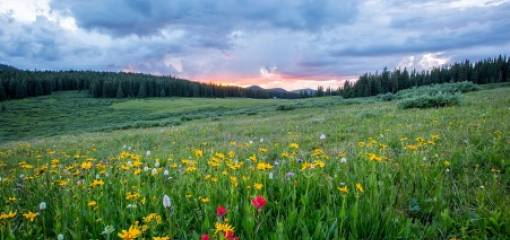 Holidays in May: Why and where?