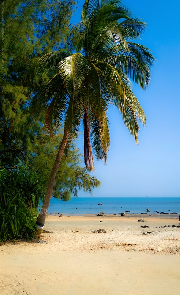 Beautiful beach in Saint Martin in the Caribbeans